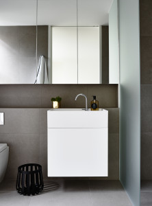 Walsh Street Carr Design Group and Neometro CDesign Vanity